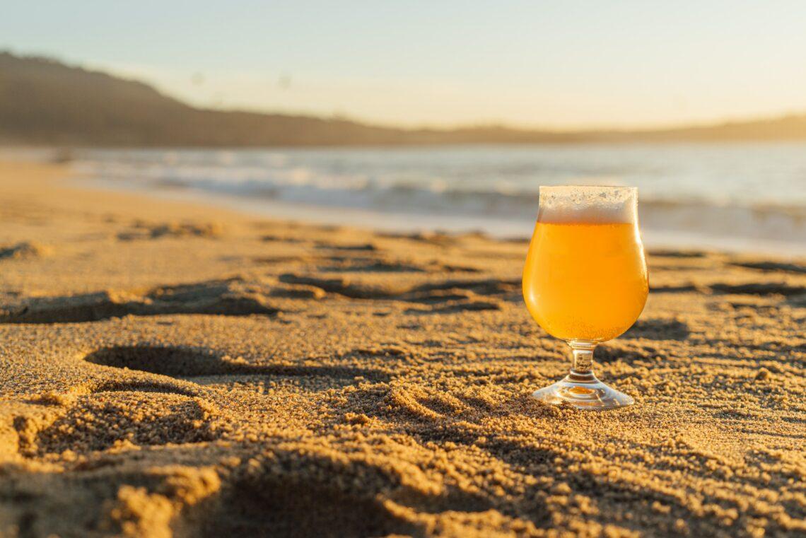 bières cantine moment fish spa